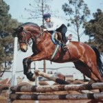horse, daughter, jumping, horse jumping, show jumping, gymkana, daughterk